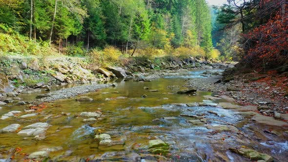 Cover Image for Mountain River Flowing Between Rocky Shores in Carpathians Mountains, Ukraine