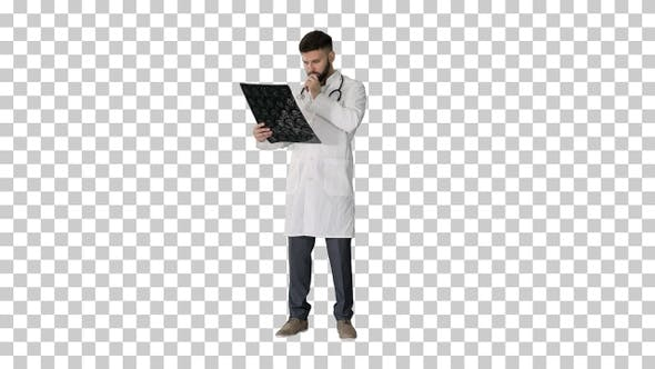 Thumbnail for Arab doctor reading and reviewing a MRI brain scan, Alpha Channel