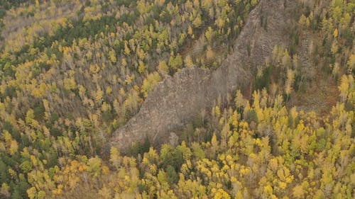 Mountain Landscape in the Siberian Nature Reserve Stolby in Autumn