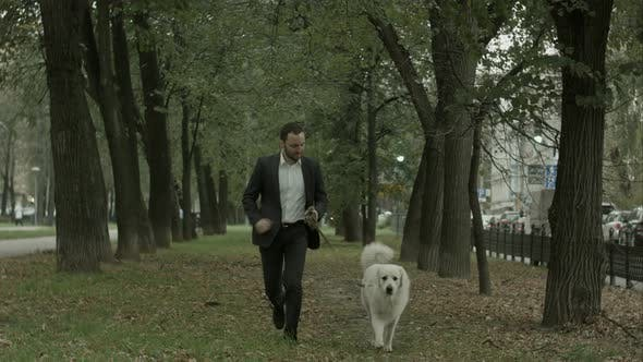 Thumbnail for Businessman Running with Big White Dog in Alley of Green Trees, Autumn