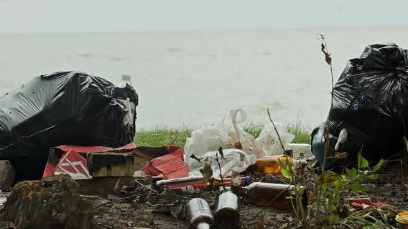 Cover Image for Empty Bottles and Containers Polluting Seashore, Tons of Garbage Damaging Nature