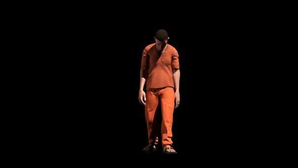 Thumbnail for Prisoner Walk