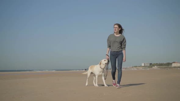 Thumbnail for Calm Woman Walking with Pet on Sandy Beach and Looking at Sea