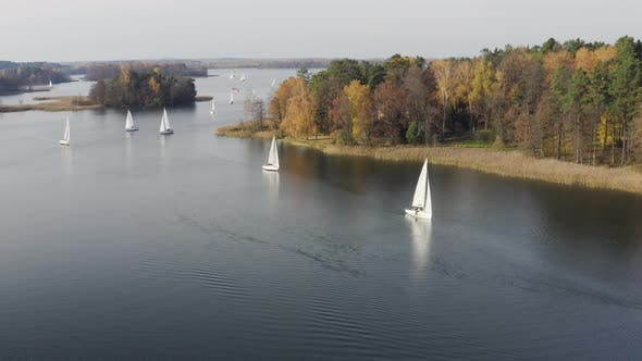 Thumbnail for Queue of Sailing Boats during Autumn Fall Season in Regatta Race