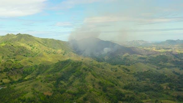 Waldbrand im Regenwald
