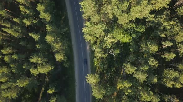 Thumbnail for Car On The Forest Road From Above