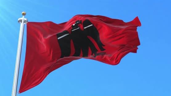 Arrano Beltza Flag
