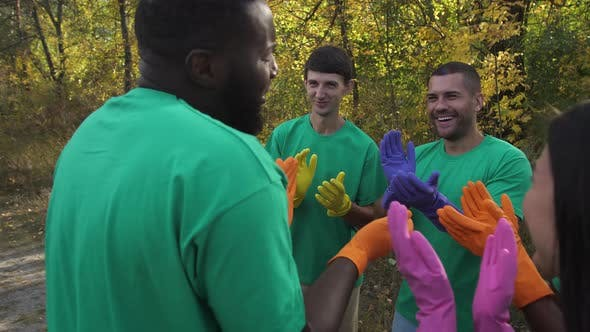 Cover Image for Happy Diverse Team Clapping After Forest Cleaning