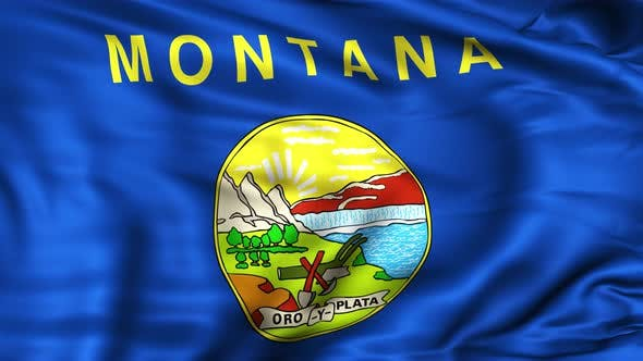 Thumbnail for Montana State Flag