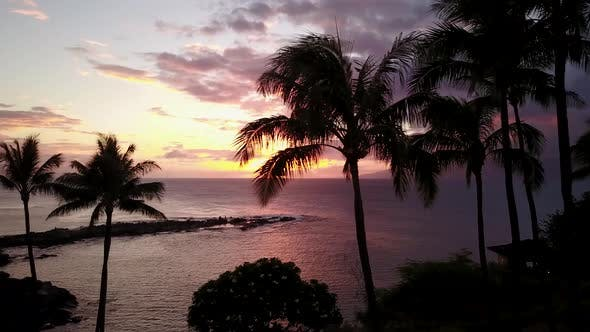 Thumbnail for Tropical Paradise on the Shore of Pacific Ocean at Sunset on Island Maui,hawaii