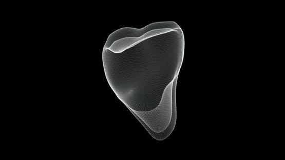 Molar Tooth Hologram