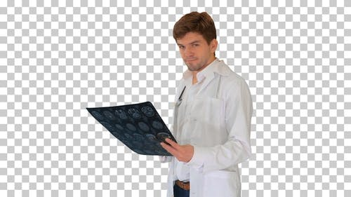 Male doctor checking computed tomography, Alpha Channel