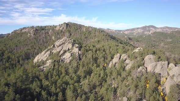 Thumbnail for Ponderosa Pine Forest Black Hills Rock Outcroppings Wilderness Green