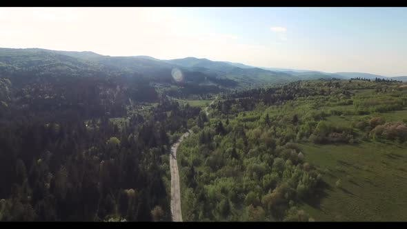 Thumbnail for Road Along the Forest Filled Sunlight. Aerial View