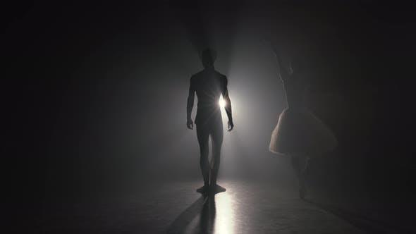 Thumbnail for Romantisches professionelles Ballettpaar Übungsbewegungen auf der dunklen Bühne. Junges Paar