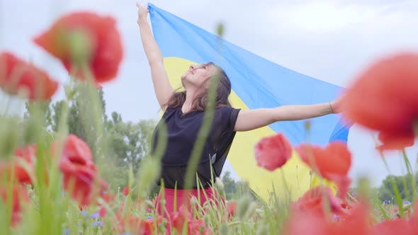 Thumbnail for Adorable Young Woman Dancing in a Poppy Field Holding Flag of Ukraine in Hands Outdoors. Connection