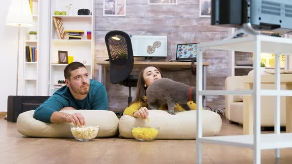 Thumbnail for Young Couple Watching Tv with Their Cat