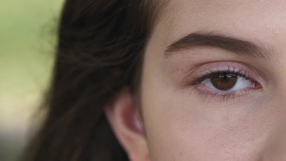 Thumbnail for Eye with Long Eyelashes, Beautiful Makeup and Light Brown Eyebrow Close-up. Eyelash Extensions
