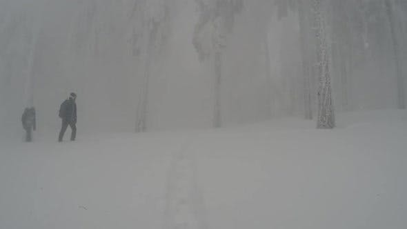 Thumbnail for Extreme Trip In A Mountain Forest During A Blizzard