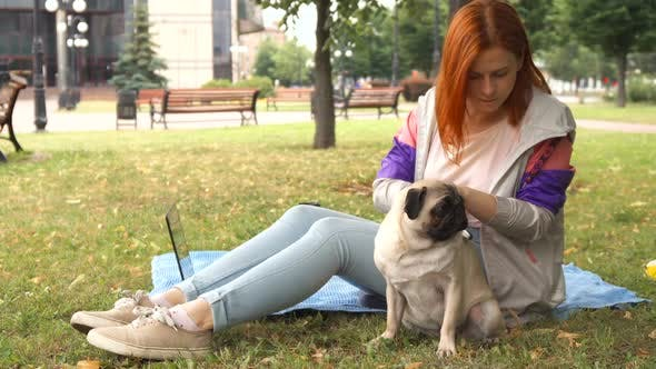 Girl Combing Her Pug Out in a Park