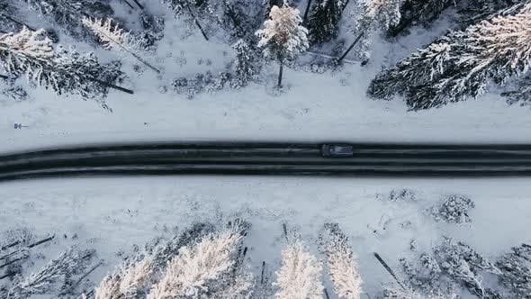 Automobile Drives Along Road Across Tranquil Winter Woods