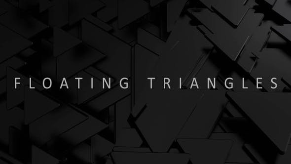 Cover Image for Black Triangles