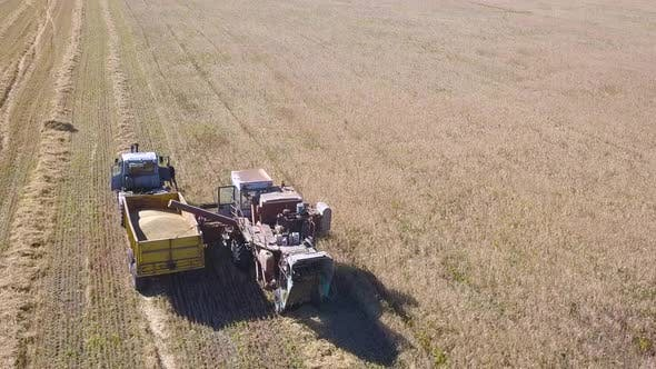Thumbnail for Aerial View of Combine Harvester Agriculture Machine Harvesting Golden Ripe Wheat Field