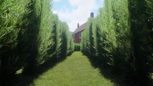 Passing Through Hedge