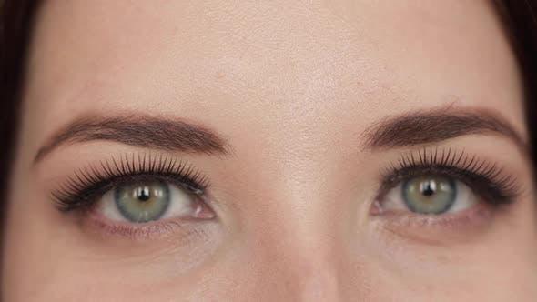 Thumbnail for Pretty Woman with Make Up and Eyelashes Looking at Camera
