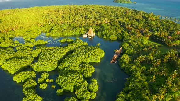 Thumbnail for River in Tropical Mangrove Green Tree Forest Aerial View
