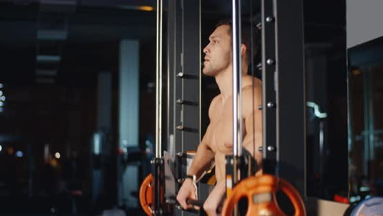 Thumbnail for Muscle Man Training With Barbell In Gym Workout Sport Health