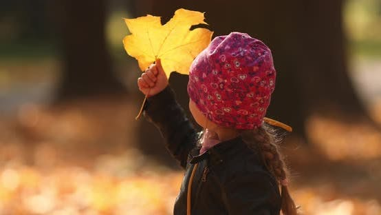 Thumbnail for Pretty Little Girl in Black Jacket Looks at the Yellow Leaves and Rejoices in the Autumn Park