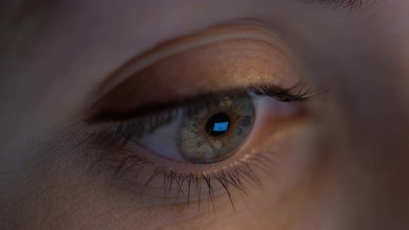 Thumbnail for Close Up of Woman Eye Looking at Computer Screen