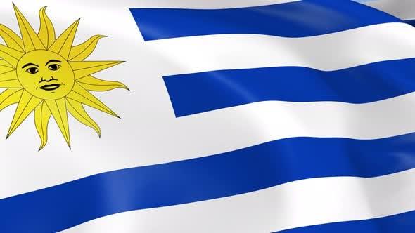 Thumbnail for Uruguay Flag