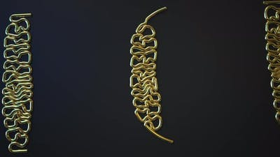 Gold Bending Wires Form TECH Word