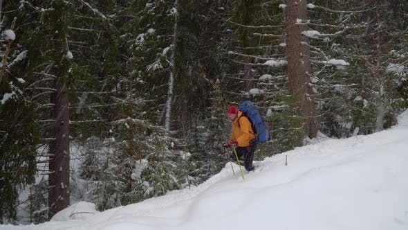 Thumbnail for Backpacker Hiking in Winter Forest