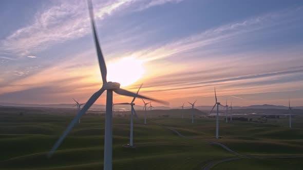 Thumbnail for Wind Farm in the Setting Sun