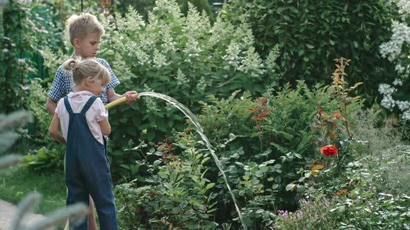 Little Children Watering Plants with Garden Hose