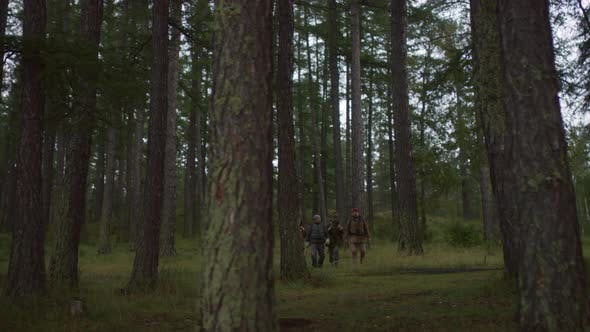 Thumbnail for Hikers Going through Forest