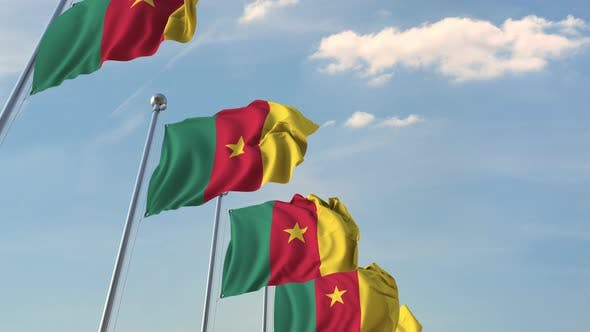 Cover Image for National Flags of Cameroon