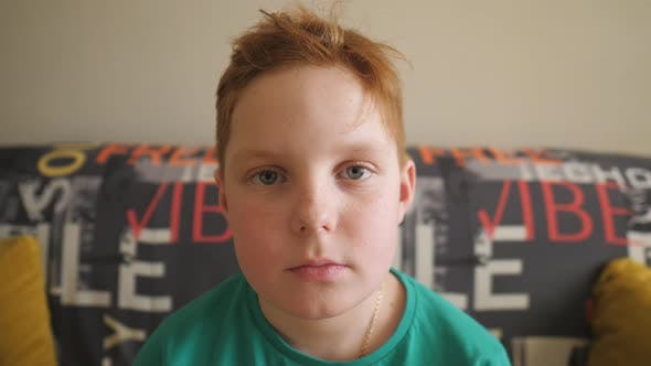 Thumbnail for Portrait of Small Tired Red-haired Boy with Freckles Sitting on the Sofa. Unhappy Little Ginger Kid