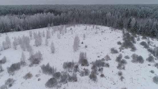 Thumbnail for Winter Landscape with Forest, Field. Winter Landscape.