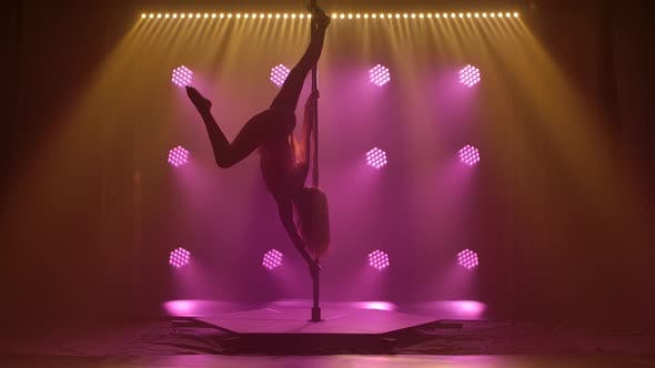Thumbnail for Beautiful Pole Dance Performed By an Athletic Young Female. Silhouette of an Attractive Body in a