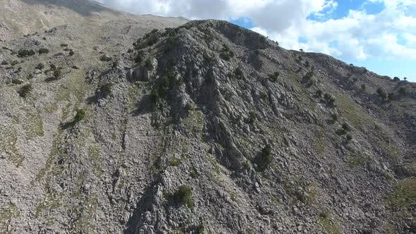 Thumbnail for Sparse Trees On Arid Rocky Mountain Slope