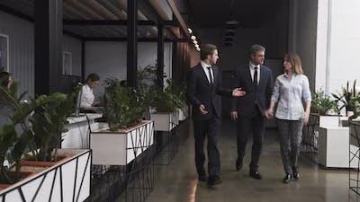 Corporate Wokers Walking In The Office