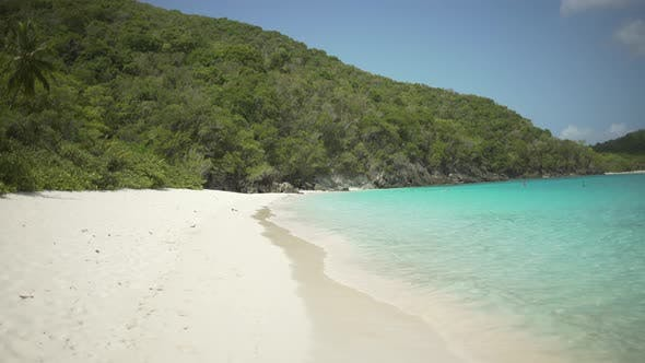 Thumbnail for Background Plate of Greenery surrounding a beautiful Caribbean beach