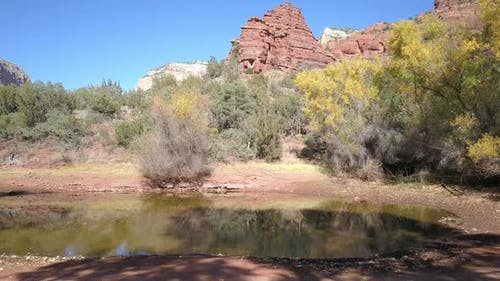 Panning view of stagnant pond in the desert