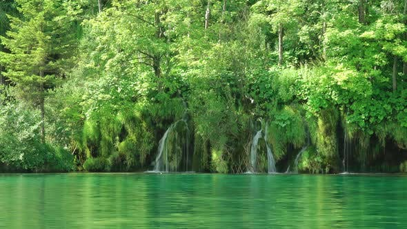 Thumbnail for Plitvice Lake and Forest Waterfalls