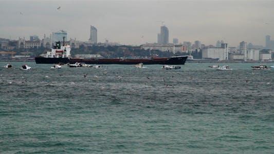 Thumbnail for Cargo Ships in Bosphorus 02
