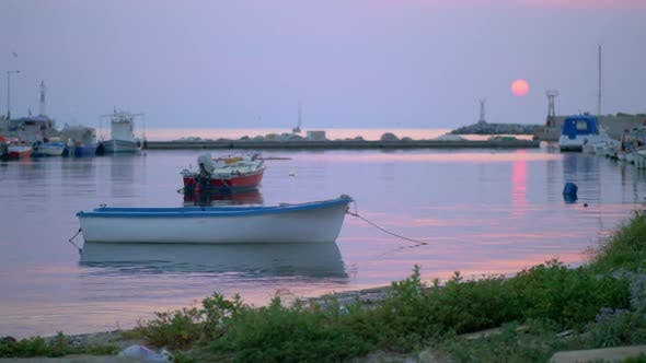Thumbnail for - Marine Evening Scene of Quiet Harbour with Tied Up Boats and Sea-gulls